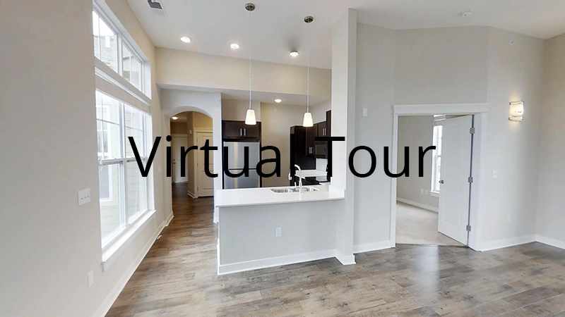Ginger A - virtual tour
